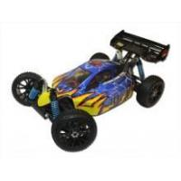 China Redcat Racing Hurricane XTE Brushless Electric RC Buggy on sale