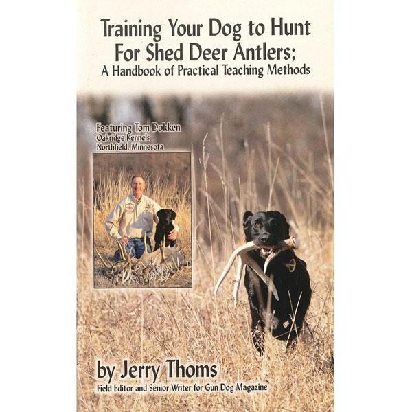 How To Train Your Dog To Find Deer Sheds