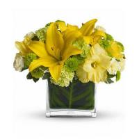 Wholesale Mothers Day Oh Happy Day by Teleflora from china suppliers