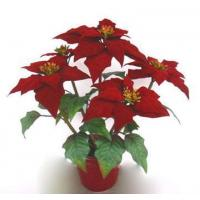 Wholesale potted flowers PPN4091 from china suppliers