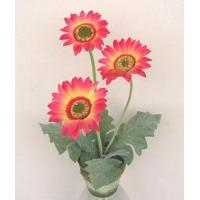 Wholesale potted flowers PGB3507 from china suppliers
