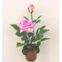 Wholesale potted flowers PRS4501 from china suppliers
