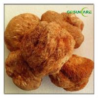 Wholesale Hericium Erinaceus Extract from china suppliers