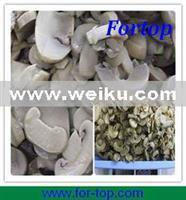 Wholesale Agriculture Canned Mushroom from china suppliers