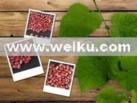 Agriculture 2012 new crop well-choosen double polished red kidney bean with competitive price
