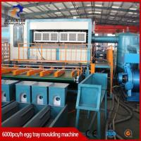 Wholesale Pulp Tray Machine Pulp Molding Egg Tray Machine from china suppliers