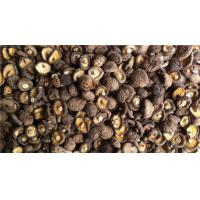 Wholesale Dried Smooth Shiitake Mushroom from china suppliers