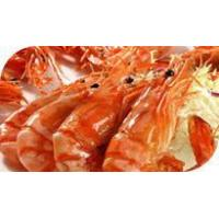 Wholesale Seafood Extract from china suppliers