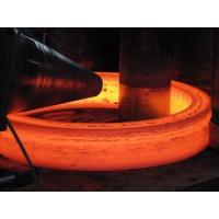 Forged Lifting D ring supplier price