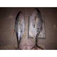 Buy cheap Fisheries Big Eye Tuna from wholesalers