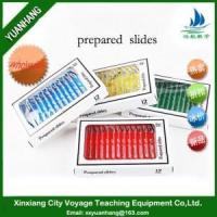 Buy cheap 12pcs Plastic Prepared Microscope Slides from wholesalers